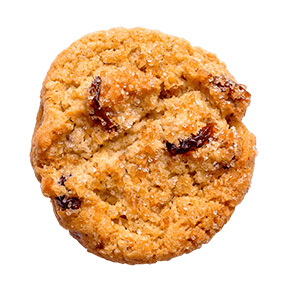 closeup of a chocolate chip cookie