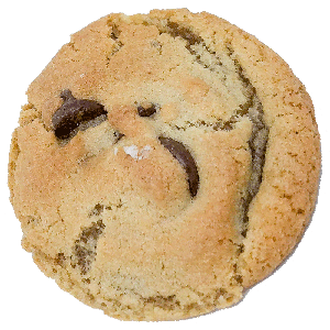 Classic Chocolate Chip Cookie to pair with a Sonoma County Craft Beer